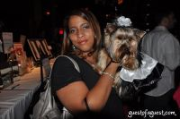 Animal Fair Magazine's 10th Annual Paws For Style #114
