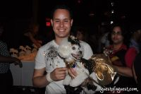 Animal Fair Magazine's 10th Annual Paws For Style #119