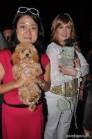 Animal Fair Magazine's 10th Annual Paws For Style #120
