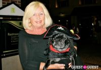 The Amanda Foundation's Bow Wow Beverly Hills #41