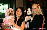 The Amanda Foundation's Bow Wow Beverly Hills #57