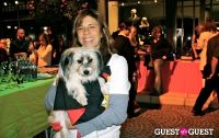 The Amanda Foundation's Bow Wow Beverly Hills #67
