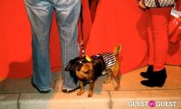 The Amanda Foundation's Bow Wow Beverly Hills #70