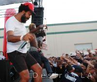 Mad Decent Block Party 2011 (LA) with Diplo #54