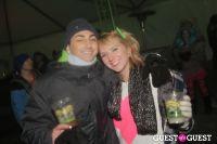 SnowGlobe Music Festival Day Two #12