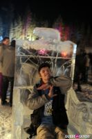 SnowGlobe Music Festival Day Two #23