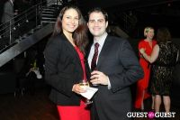 American Heart Association Young Professionals 2013 Red Ball #293