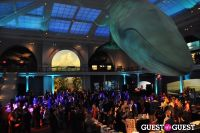 American Museum of Natural History's 2013 Museum Dance #57