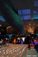 American Museum of Natural History's 2013 Museum Dance #95