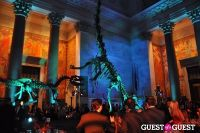 American Museum of Natural History's 2013 Museum Dance #118