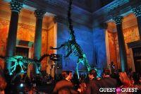 American Museum of Natural History's 2013 Museum Dance #119