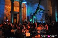 American Museum of Natural History's 2013 Museum Dance #128
