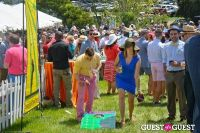 Becky's Fund Gold Cup Tent 2013 #58
