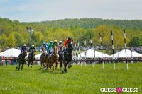 Becky's Fund Gold Cup Tent 2013 #71