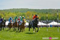 Becky's Fund Gold Cup Tent 2013 #72