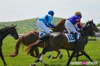 Becky's Fund Gold Cup Tent 2013 #85