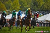 Becky's Fund Gold Cup Tent 2013 #91