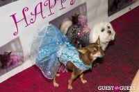 Pebble Iscious and Z Zee's Disco Birthday Bash  #42