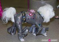 Pebble Iscious and Z Zee's Disco Birthday Bash  #49