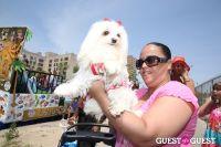 Coney Island's Mermaid Parade 2013 #7