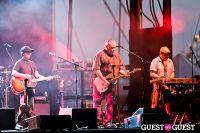 Los Lobos at the Lowdown Hudson Music Festival #42