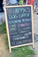 MidCity Dog Days Festival #42