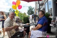 MidCity Dog Days Festival #67