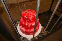 Architect Rene Gonzalez's 50th Birthday Bash #111
