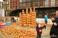 Old Navy's Urban Pumpkin Patch #8