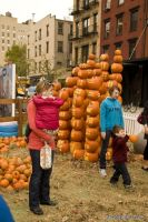Old Navy's Urban Pumpkin Patch #19