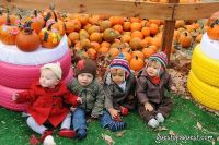 Old Navy's Urban Pumpkin Patch #35