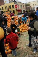 Old Navy's Urban Pumpkin Patch #46