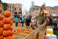 Old Navy's Urban Pumpkin Patch #54