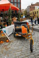 Old Navy's Urban Pumpkin Patch #58