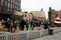 Old Navy's Urban Pumpkin Patch #65