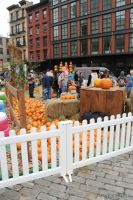 Old Navy's Urban Pumpkin Patch #66