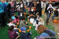 Old Navy's Urban Pumpkin Patch #70