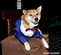 Menswear Dog's Capsule Collection launch party #88