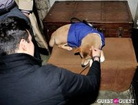 Menswear Dog's Capsule Collection launch party #103