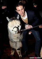 The Alpaca Project Celebration #60