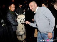 The Alpaca Project Celebration #61
