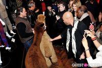 The Alpaca Project Celebration #62