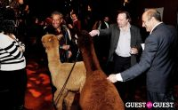The Alpaca Project Celebration #64