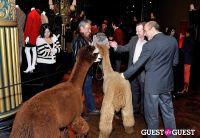 The Alpaca Project Celebration #66