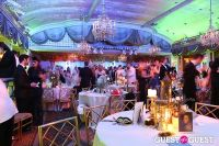 Save Venice Enchanted Garden Ball #61