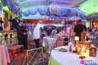 Save Venice Enchanted Garden Ball #62