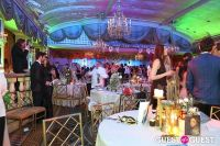 Save Venice Enchanted Garden Ball #63