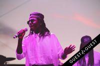 FYF Fest 2014 #41