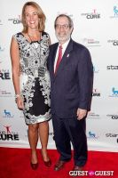 Stand Up for a Cure 2013 with Jerry Seinfeld #30