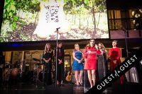 Brazil Foundation XII Gala Benefit Dinner NY 2014 #195